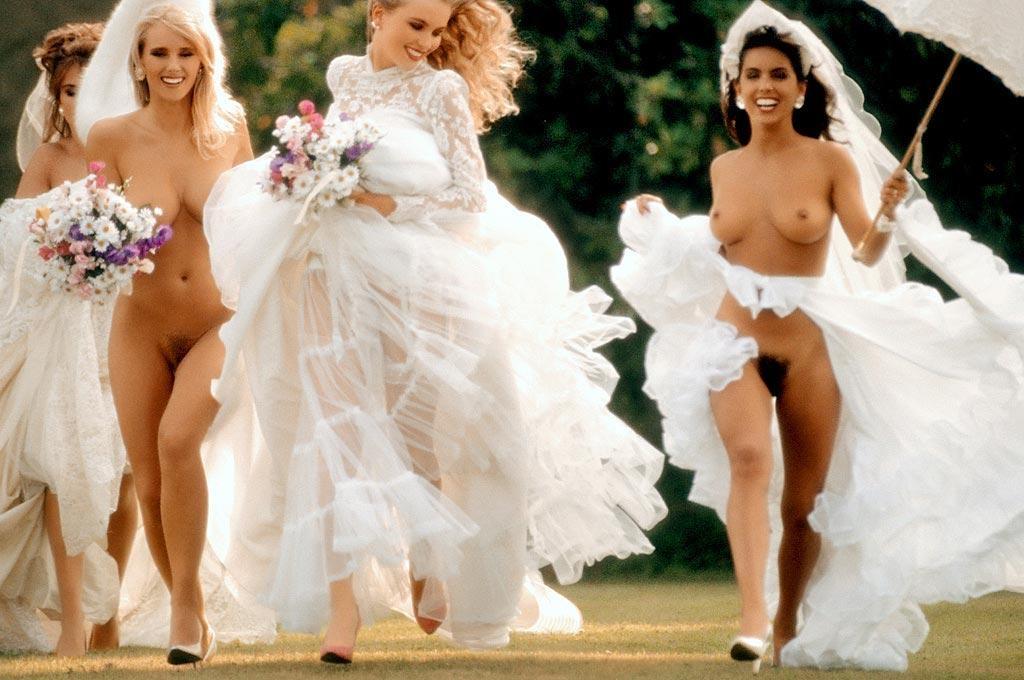 Free amanda swisten american wedding